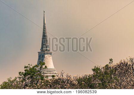 pagoda in sunlight sky and white frangipani