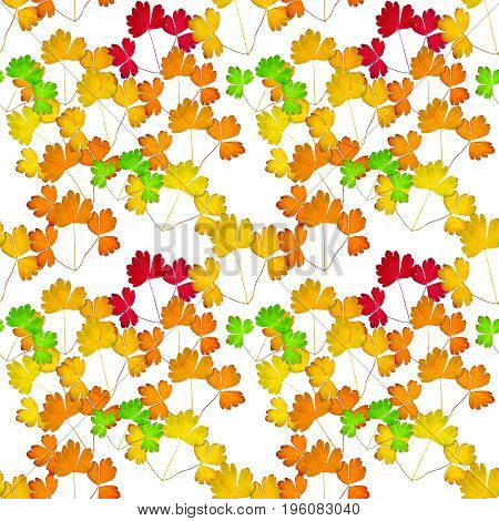 Leaves aquilegia vulgaris. Texture of flowers. Seamless pattern for continuous replicate. Floral background photo collage for production of textile cotton fabric. For use in wallpaper covers