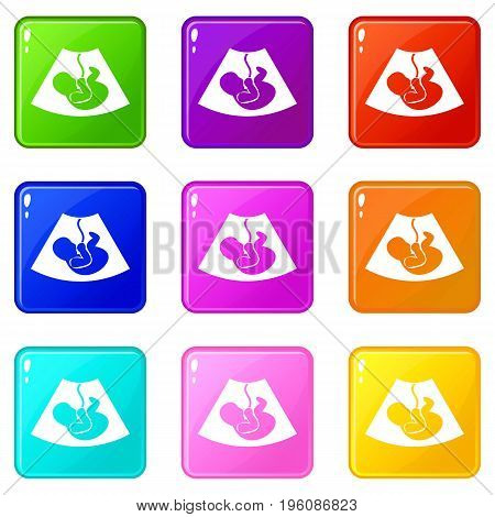 Ultrasound fetus icons of 9 color set isolated vector illustration