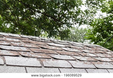 horizontal image of house shingles that are in very worn out and need replacing.