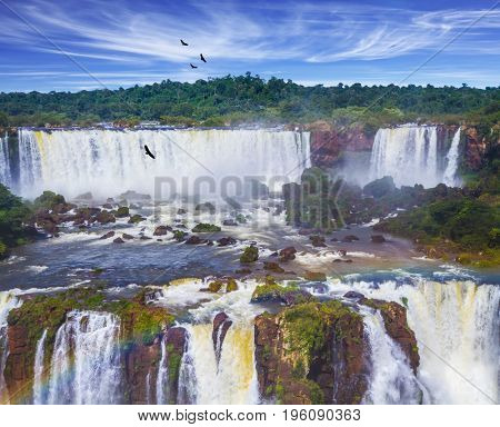 Grandiose multi-level waterfalls Iguazu in South America. Andean condors fly in the water dust. Concept of active and extreme tourism