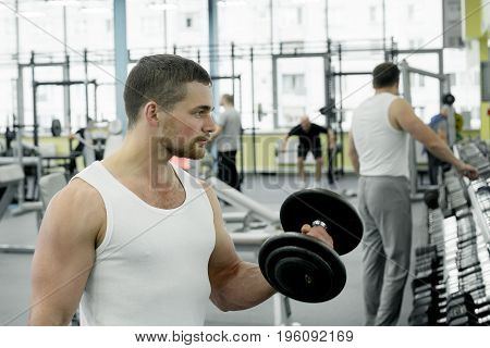 Athlete Doing Exercise For Biceps With Dumbbells Sitting On A Bench. Young Muscular Man Trains At Th