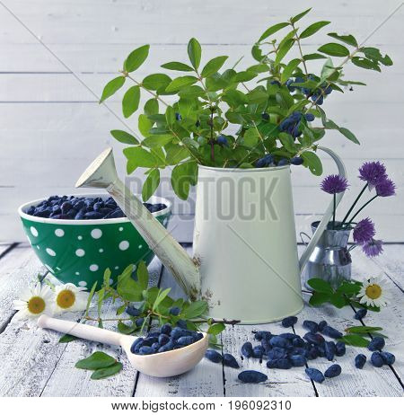 Ripe honeysuckle berry and watering can with green branches on the table. Beautiful summer vintage background, vegetarian and vegan concept, rural still life with berry and flowers
