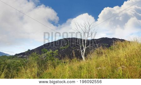 Black mountain near Cooktown North Queensland Australia