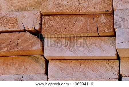 Pine planks are viewed on edge in the sunlight.