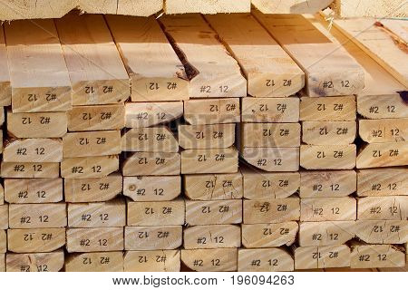 Multiple labeled pine planks are viewed on edge.