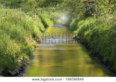 Clear water flows through a beautiful riverine landscape.