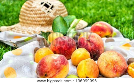 Apricots and peaches with a tablecloth and straw hat. Fruit on green fresh grass in the garden.