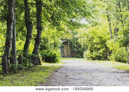 the route passes through beautiful forest and field