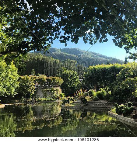 Beautiful scenery from Gilroy Gardens in Gilroy, California.