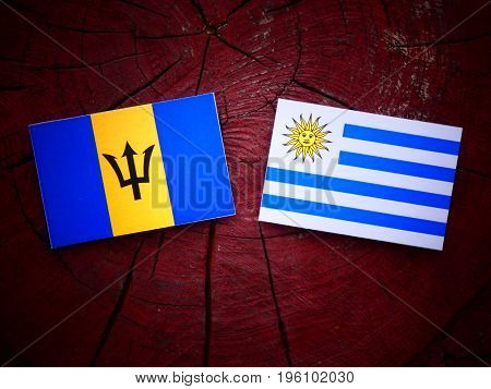 Barbados Flag With Uruguaian Flag On A Tree Stump Isolated