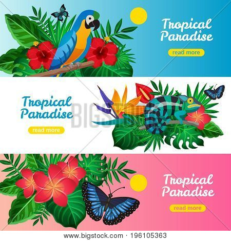 Three colored tropical horizontal banner set with tropical paradise descriptions and read more buttons vector illustration