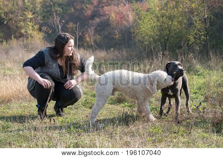 Girl and her dogs playing some games