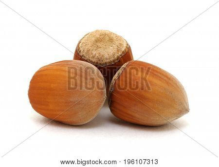 Closeup of hazelnuts isolated on the white background.