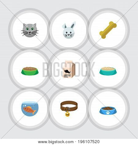 Flat Icon Pets Set Of Bunny, Hound Necklace, Rabbit Meal And Other Vector Objects