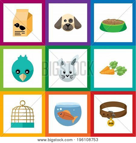 Flat Icon Pets Set Of Nutrition Box, Bunny, Bird Prison And Other Vector Objects