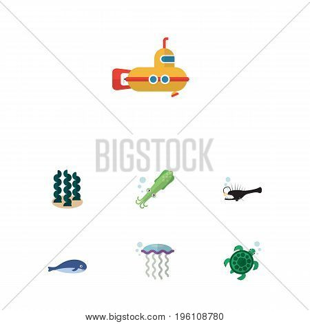 Flat Icon Sea Set Of Alga, Periscope, Cachalot And Other Vector Objects