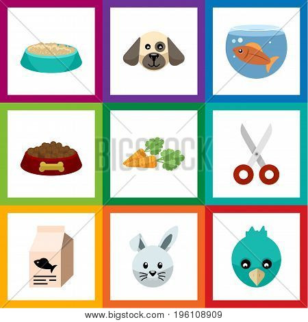 Flat Icon Pets Set Of Fishbowl, Shears, Dog Food And Other Vector Objects