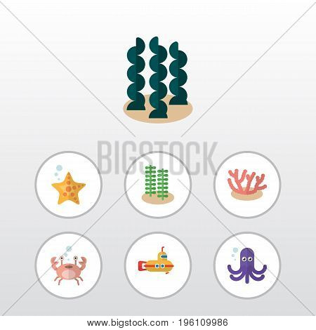 Flat Icon Sea Set Of Cancer, Sea Star, Tentacle And Other Vector Objects