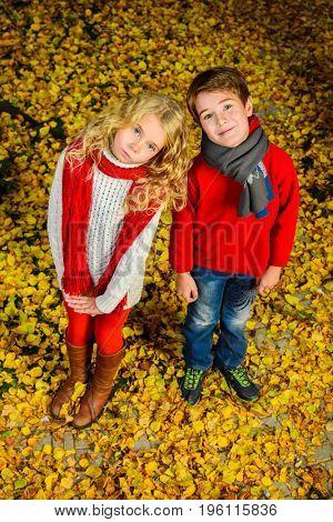 Two cheerful kids in a beautiful autumn park. Children's fashion. Autumn leaf fall.