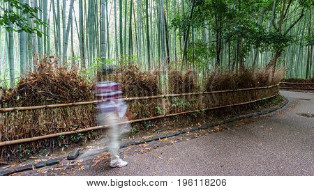Wide angle long exposure in Arashiyama bamboo forest with blurred tourists, Kyoto, Japan