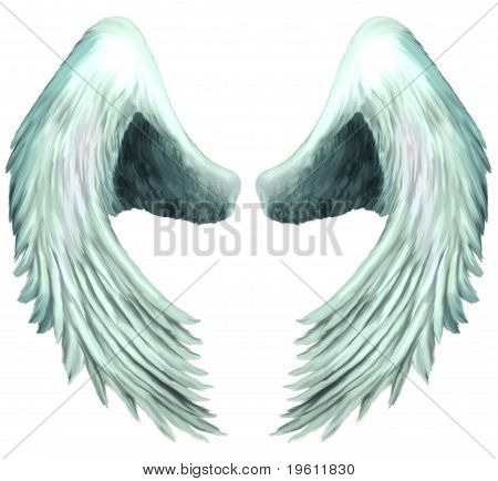 Seraphim Angel Wings 1