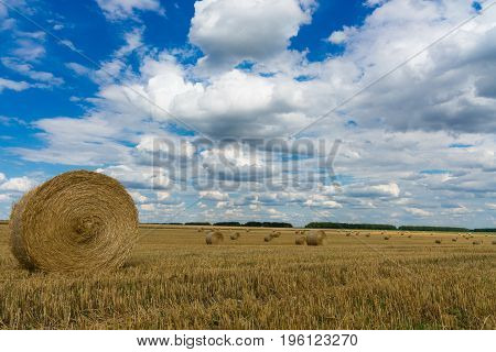 Dry rural field with hay stacks. abstract, backgrounds,