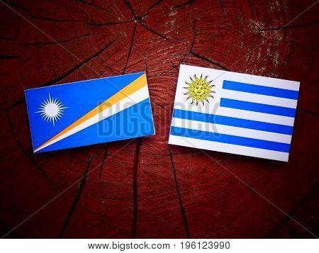 Marshall Islands Flag With Uruguaian Flag On A Tree Stump Isolated