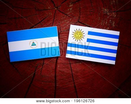 Nicaraguan Flag With Uruguaian Flag On A Tree Stump Isolated