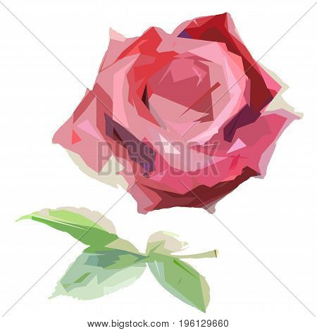 Wildflower rose flower in a vector style isolated. Full name of the plant: hulthemia. Vector wild flower for background, texture, wrapper pattern, frame or border.