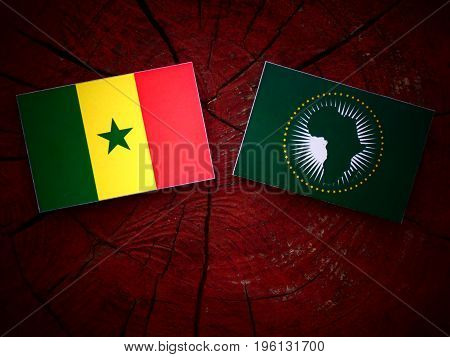 Senegal Flag With African Union Flag On A Tree Stump Isolated
