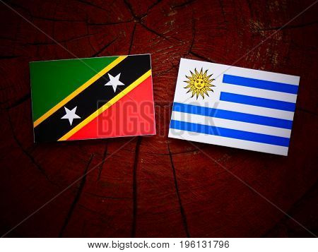 Saint Kitts And Nevis Flag With Uruguaian Flag On A Tree Stump Isolated