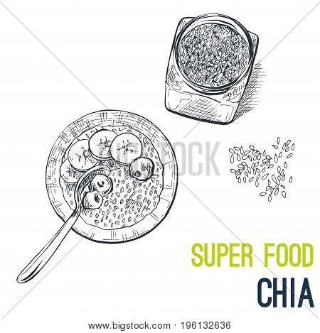 Chia seeds. Super food hand drawn sketch vector illustration.