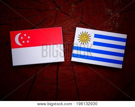 Singaporean Flag With Uruguaian Flag On A Tree Stump Isolated
