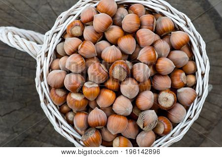 White basket of hazelnuts on old stump background