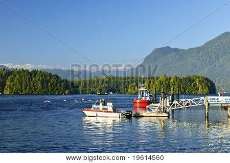 Boats At Dock In Tofino, Vancouver Island, Canada