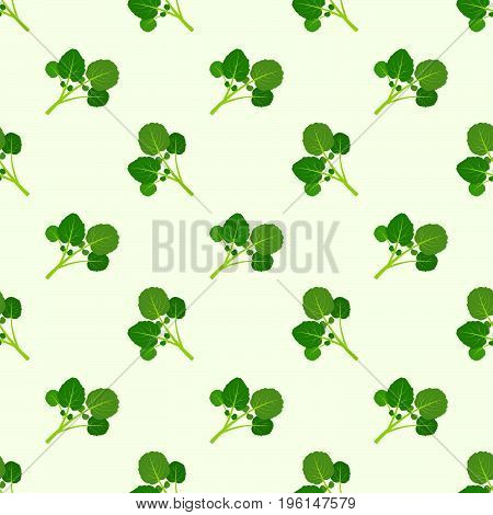 Seamless Background Image Colorful Vegetable Food Ingredient Watercress