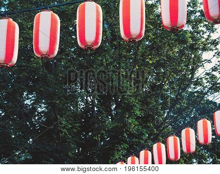 Paper red-white japanese lanterns Chochin hanging on green tree background.