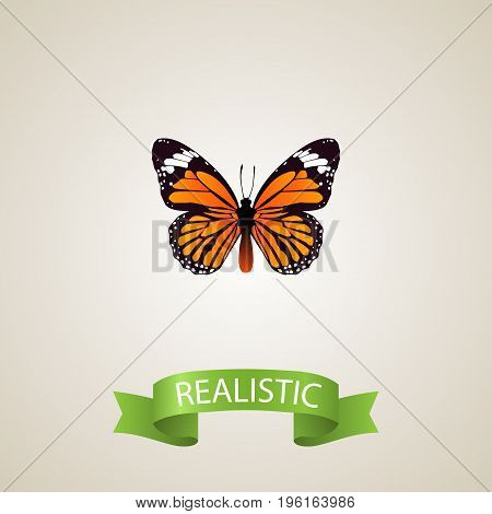 Realistic Danaus Plexippus Element. Vector Illustration Of Realistic Monarch Isolated On Clean Background