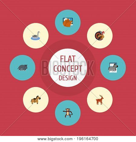 Flat Icons Chipmunk, Hippopotamus, Horse And Other Vector Elements