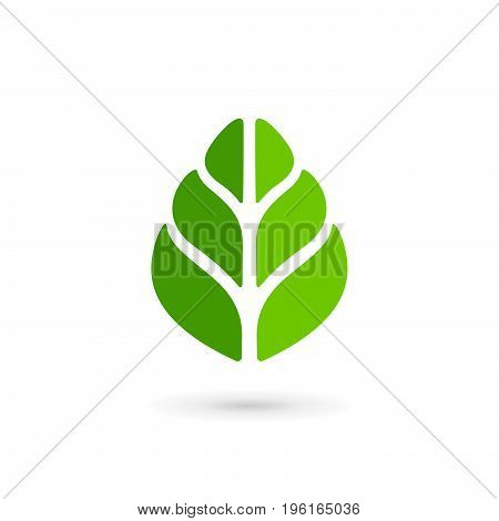 Eco Leaves Logo Icon Design Template Elements