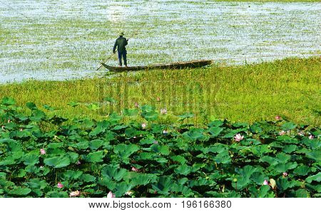 Vietnam landscape for travel at Mekong Delta man stand on row boat move on river lotus flower bloom in pink wonderful sight seeing and peaceful