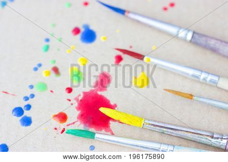 Row Of Artist Paintbrushes Closeup