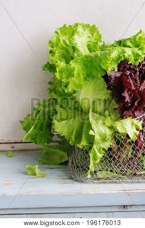 Fresh green and purple leaf salad in basket over old blue white wooden kitchen table. Rustic style, day light.
