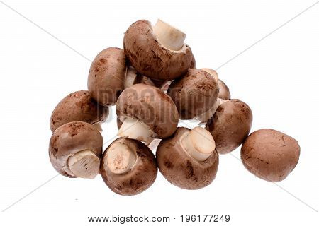 Gray Mushrooms Champignons Isolated On White Background