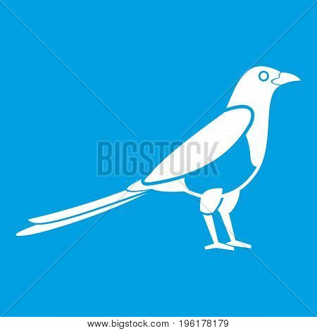 Bird magpie icon white isolated on blue background vector illustration