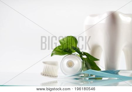 Close-up of a herbal toothpaste on toothbrush with white healthy ceramic tooth model tube and green herb isolated on white background with copy space. Dental care concept.