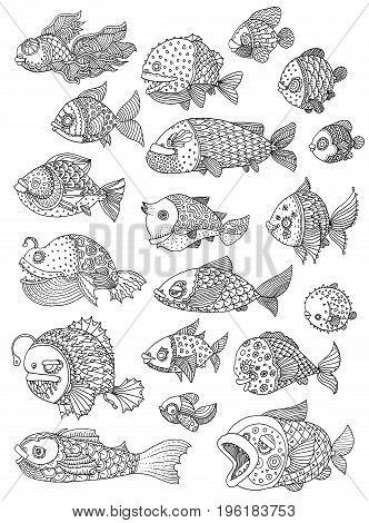 richly decorated fish vector hand drawing illustration big set