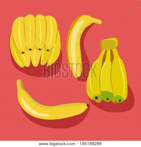 Banana icon collection. Bananas pack Bunches of fresh banana fruits isolated.
