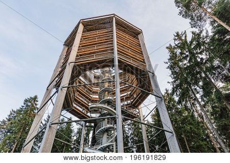 Treetop Walkway lignting Sightseeing trail in tree crowns. Wooden construction with a slide in the middle. Touristic place and unique constructionc. Treetop Walkway in Lipno Czech Republic